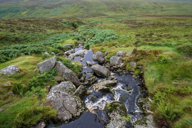 アイルランドの丘を流れます。ウィックローパーク
