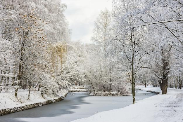 冬の森の風景雪の厚い層の下の木。ロシア、モスクワ、ソコルニキ公園