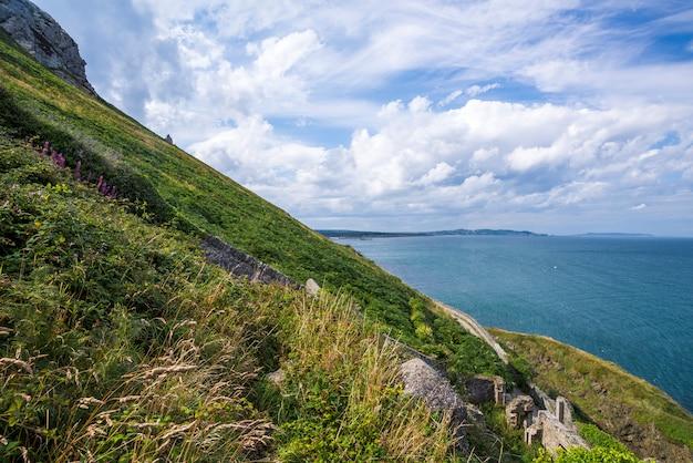 アイルランドの海岸の山の斜面