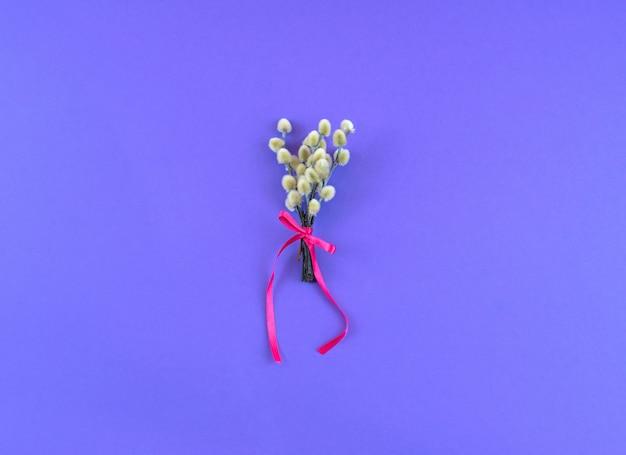 紫外線の背景に尾状花序枝の花束