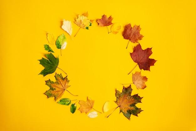 色鮮やかな紅葉のフラットレイアウトリース。自然の背景。季節のコンセプト
