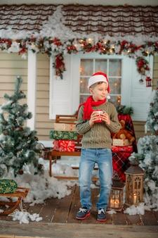 Мальчик в рождественские украшения