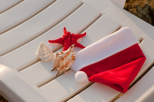 Шапка санта клауса, тропическое рождество