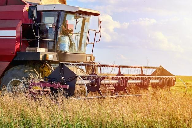 ライ麦畑を収穫するハーベスタマシン