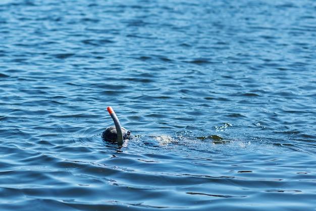 Дайвер в гидрокостюме с маской и трубкой под водой в озере