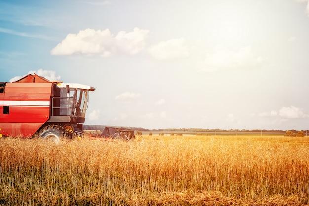 ゴールデン熟した小麦を収穫する収穫機農業機械を組み合わせる