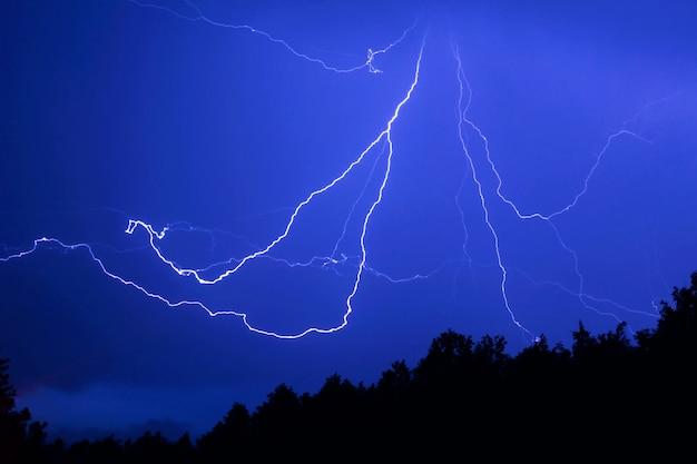 夜の森の上の蜘蛛の形をした雷