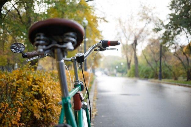 マウンテンバイク。自然に対するアクティブレジャー