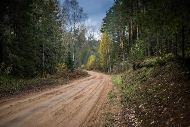 Лесная дорога, идущая через осенний лес