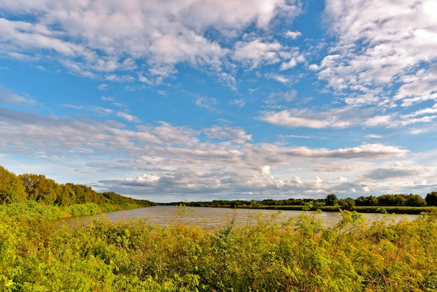 乾いた木は青い空の下の湿地帯の水と夜の白い雲を反映しています。