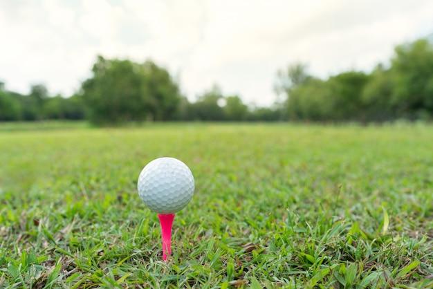 ゴルフ場でピンクのティーにゴルフボールのショットを閉じる。
