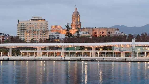 スペイン、マラガの港からマラガ大聖堂とマラガ宮殿のホテルの眺め
