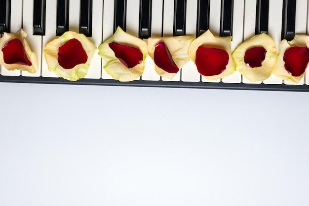 赤と白のバラの花びら、分離、上面図、コピースペースとピアノの鍵