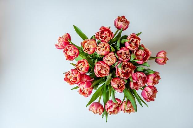 白い壁にピンクコーラルチューリップの花束。