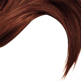 健康的な茶色の髪、白で隔離