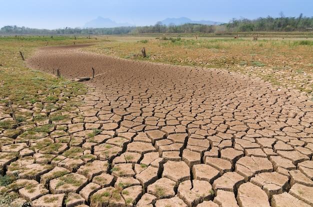 地球温暖化、干ばつ。