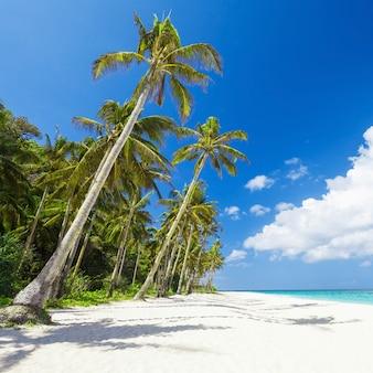 Пляж красоты