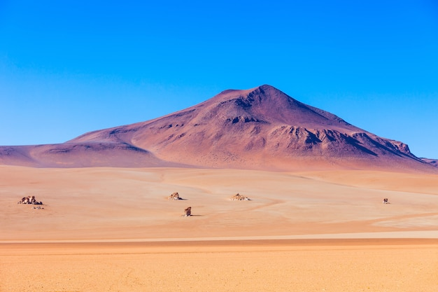 Сальвадор дали пустыня