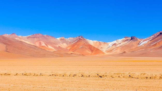 サルバドールダル砂漠