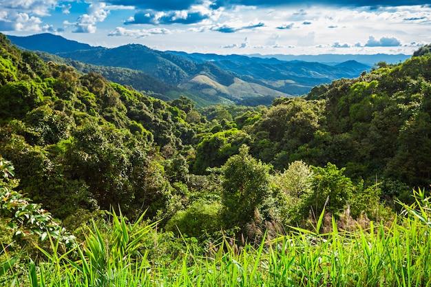 北タイの風景