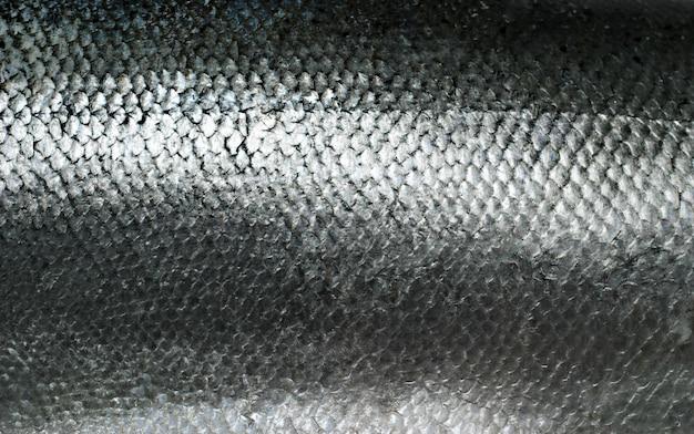 鮭の魚の鱗グランジテクスチャ
