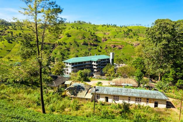 お茶工場、スリランカ