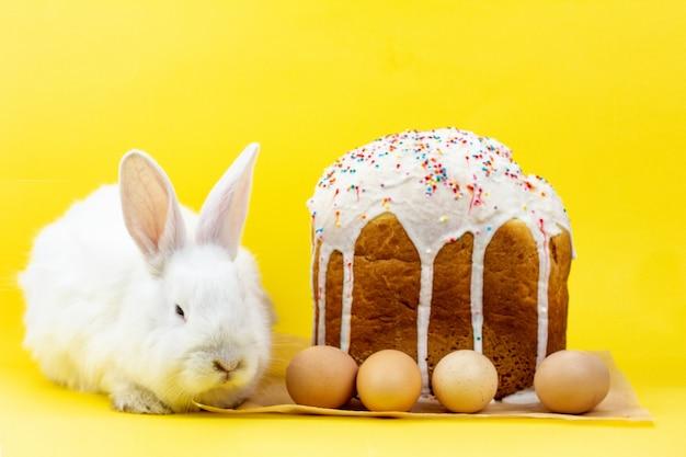 パステルイエローの壁にイースターエッグのカップケーキが付いたイースターホワイトのふわふわライブウサギ。イースター休暇のコンセプト