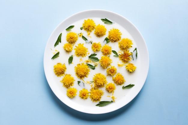 Желтые цветы одуванчика плавают в белом молоке