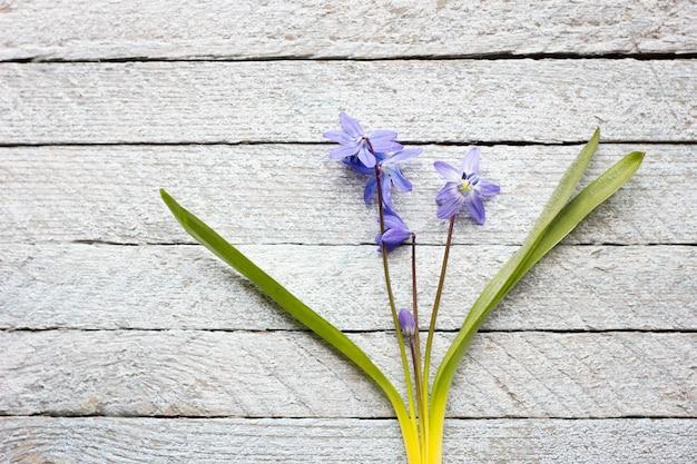 木製の背景に青い花の花束