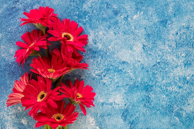 青と白の背景に赤い花