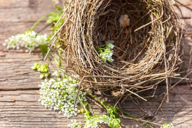 木製の背景に美しい小鳥の巣