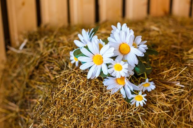 壁に白いヒナギクの花の花束