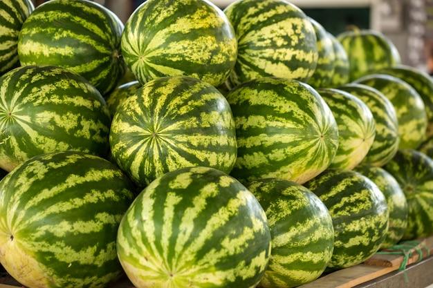 Большие зеленые арбузы на рынке.