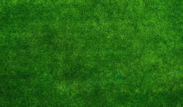 テキストまたはデザインのためのスペースを持つ緑の芝生テクスチャ背景