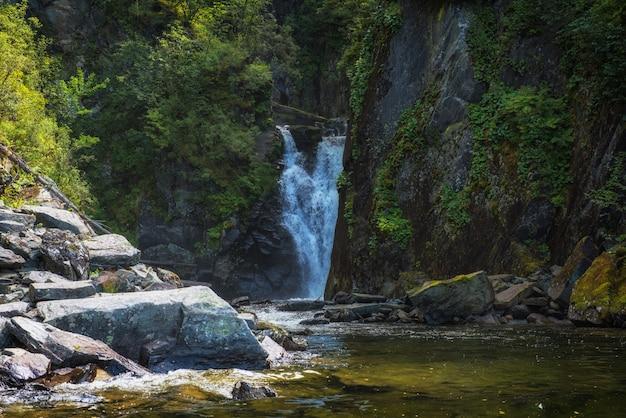 自然の中の滝