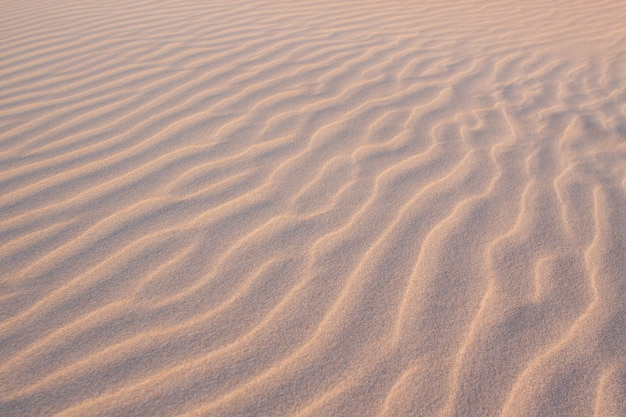 砂の中の形
