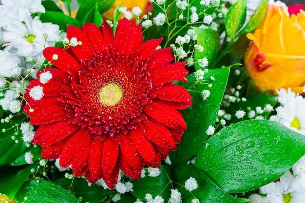 Гербера хризантема и роза