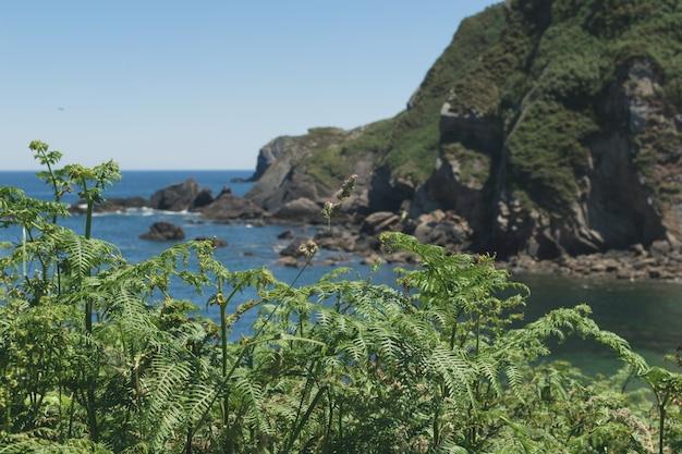 スペイン北部の海岸の崖