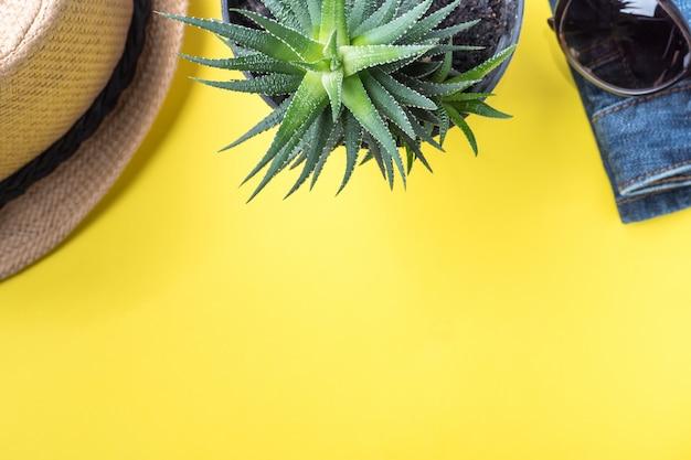 夏休みのコンセプトです。黄色の背景に帽子サボテンサングラス