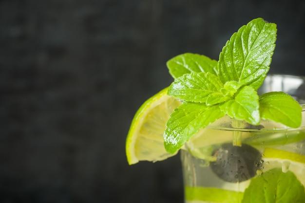 夏の爽やかな飲み物は、ライムフレッシュミントブルーベリーアイスと共にレモネードまたはカクテルモヒートを飲みます。