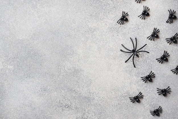 灰色の背景に黒のクモ