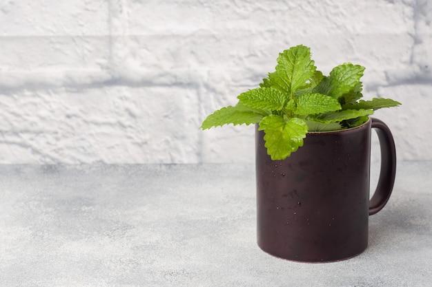 新鮮なミントの葉、灰色のテーブルの上のカップ