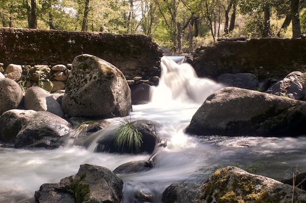 森の中心にある川の絹のような滝