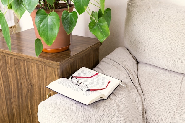 Книга и очки на верхушке дивана