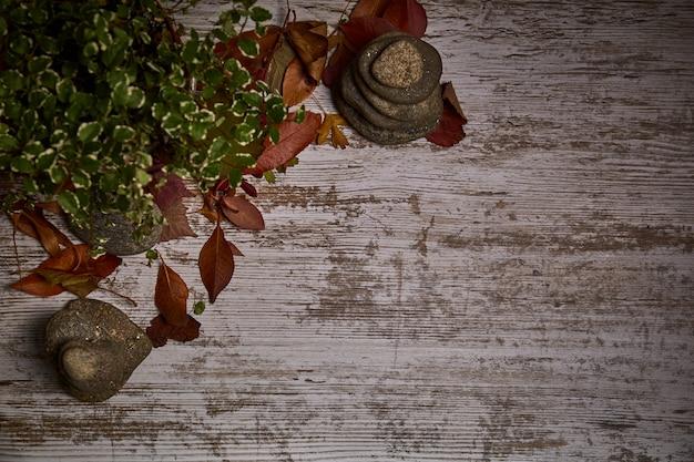 乾燥した葉と果物の周りの光の木のテーブル背景