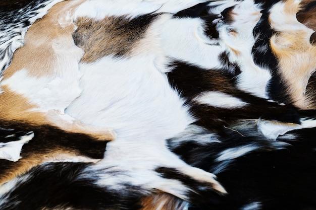 いくつかの処理されたヤギの皮