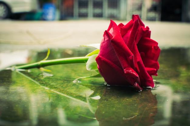 赤いバラ背景ヴィンテージ