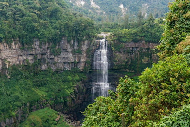 山と森の中の滝
