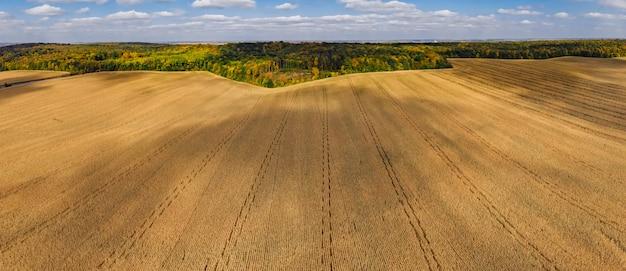 秋の空中パノラマドローン田園地帯トウモロコシ畑と森林