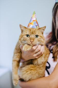 お祝い帽子の中の猫
